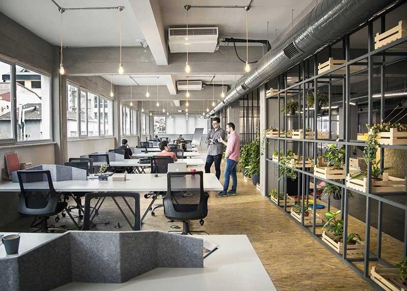 Thiết kế nội thất văn phòng công nghiệp kết hợp khu cây xanh hài hòa