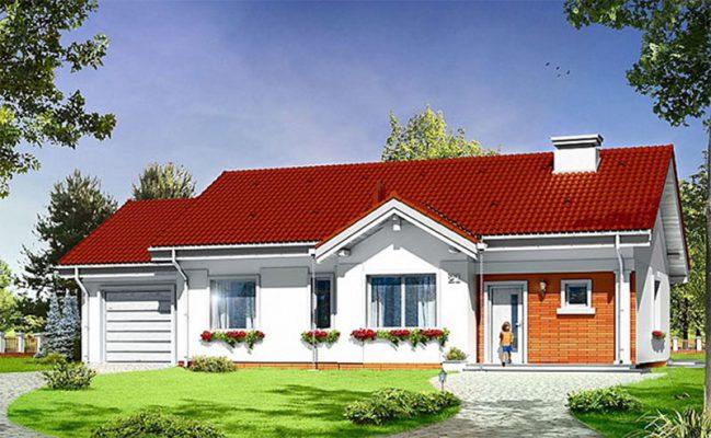 Thiết kế mái chéo nhà vườn 1 tầng